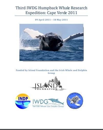 Cape Verde Humpback Expedition 2011 report
