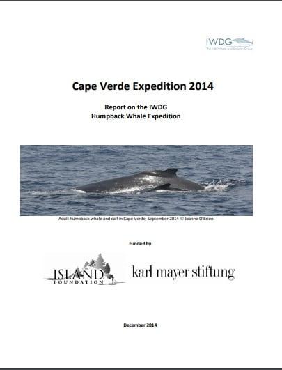 Cape Verde Humpback Expedition 2014 report