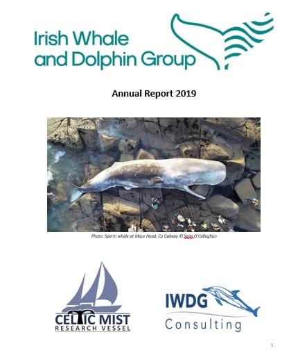 IWDG Annual Report 2019