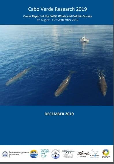 Cabo Verde Survey Report  2019