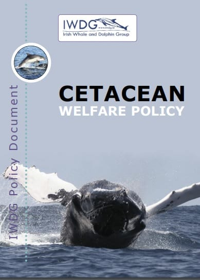 Welfare Policy Document